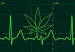 Marijuana-droghe-1024x715