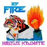 """Hiatus-Kaiyote-–-""""By-Fire""""-EP"""
