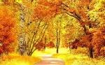 осінь 1