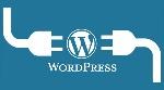 wordpress-NEWopt-800x445