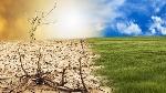 desertificazione-620x350 (2)