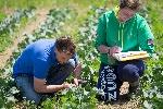 enseignement_agricole