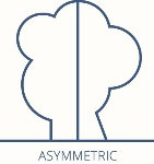 symmetic-v-asymmetricuy