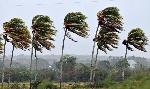 fuertes vientos
