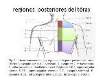 examen-respiratorio-9-638