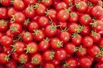 Jesmond-Fruit-Barn-Cherry-Tomatoes