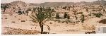 CHEBIKA  Oais del desierto TUNEZ