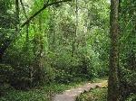 Iguazú2014 108