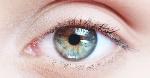Human-eye