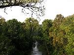 wacana.co_HUtan-Hujan-Tropis-Sumatera-
