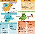 ORGANIZACIÓN TERRITORIAL ESPAÑA
