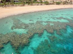 Fringing-Reef