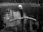 black-swamp