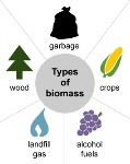 BIOMASSTYPES