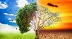 impacto-ambiental-aumento-temperaturas-cambio-climatico