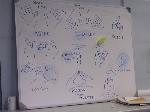 800px-Occupy_movement_handsignals_diagram_bank_of_ideas_nov_2011