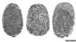 _63146121_fingerprint_types