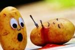asesinato-patatas
