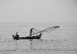 1200px-Fishing_with_cast-net_from_a_boat_near_Kozhikode_Beach