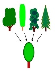 220px-Generalization_process_using_trees_PNG_version