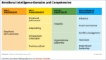 Mindfulness - EI Domains and Competencies