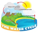 water-cycle-lge