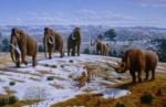 httpstved-prod.adobecqms.netcontentdameditorialTelevisamexicomuyinteresantemxciencia1111extincion-especies-prehistoricas-1600x1043.imgo_-770x502