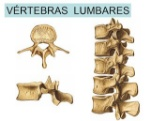 huesos-irregulares