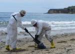 cleanup-workers-shoveling-oil-into-bag-sandy-beach-refugio_coast-guard_980