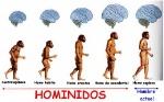 hominidos_lamina_3