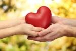 manos-sujetando-un-corazon