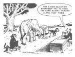 self-differentiation
