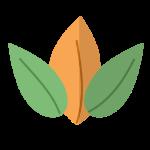 52de32f0def333555d272187af92df04-ilustraci-n-natural-de-hojas-planas-by-vexels
