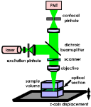 Schematic-of-the-Leica-SP2-TCS-Confocal-laser-scanning-microscope-52