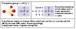 Figure 4.9bb
