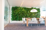 Green wall indoor