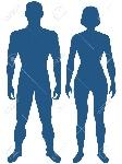 37135296-ilustración-del-cuerpo-humano-silueta-el-hombre-y-la-mujer