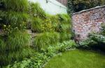 Verticaal-tuinieren-juni-149-419x273