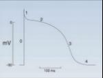 grafico pr