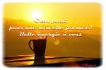 top-sms-bonjour