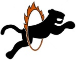 tiger-in-flaming-hoop-simple-vector-clip-art_csp32691614 - Copy