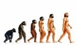 El-estudio-de-fósiles-influyó-en-Charles-Darwin-para-crear-su-teoría-de-la-evolución