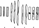 Types-of-cell-divisions-in-fusiform-initials-of-vascular-cambium-a-c-Types-of