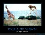 CR_9153_53ebc8e1779f492db8ecc8a9b8a77e5d_teoria_de_darwin