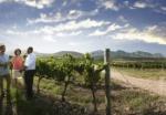 SAT_French_Wine_Farm_700_486_90_s_c1_c_c