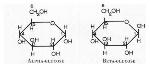 alphaBetaGlucose