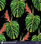 padrao-floral-perfeita-com-aquarela-monstera-folhas-e-heliconia-flores-selva-folhagem-de-fundo-design-de-texteis-hx3maa