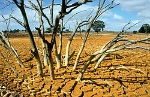250px-CSIRO_ScienceImage_4507_Dry_bed_of_the_tailings_dam_at_the_Brukunga_Pyrite_Mine_east_of_Adelaide_in_the_Mount_Lofty_Ranges_South_Australia_1992