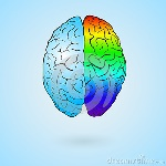 colored-brain-left-right-concept-illustration-eps-vector-49475325