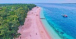 Pink-Beach-Sand-Island-in-the-Philippines-Project-LUPAD